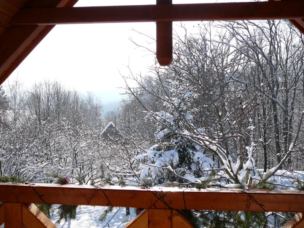 Kilátás az emeletről télen